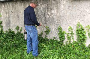 exterminator spraying for pests